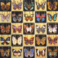 """THE BUTTERFLY PROJECT"", Oil & 23K Gold Leaf on 25 individual Linen Panels, each 13″ x13″."