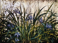 """IRIS AND GRASSES"", Watercolor & 23K Gold Leaf on Paper. 22""x30"", 1975"
